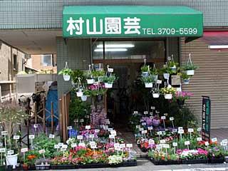 Murayama gardening